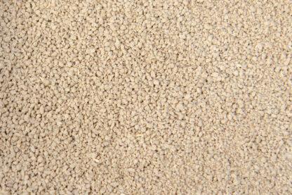 Amchoor Powder